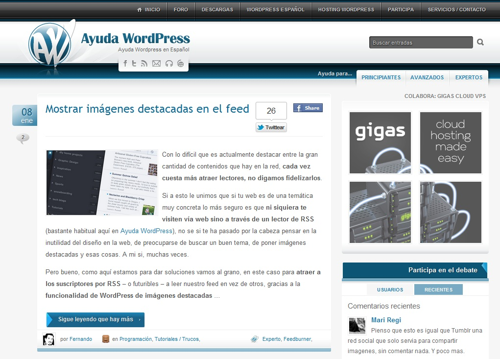 ayuda wordpress