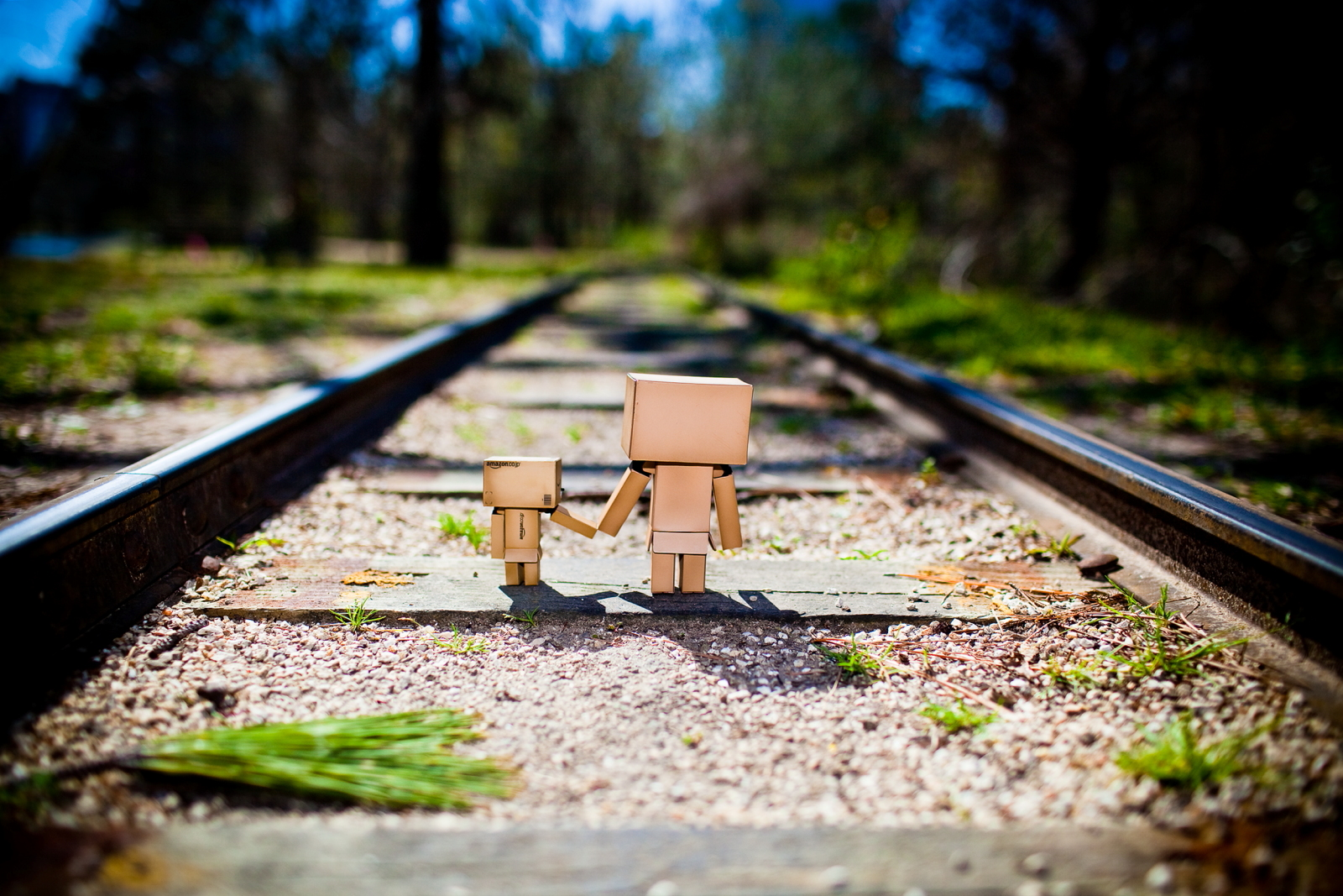 wallpaper danbo 6