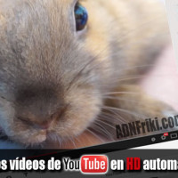 Ver-videos-Youtube-en-HD-automáticamente