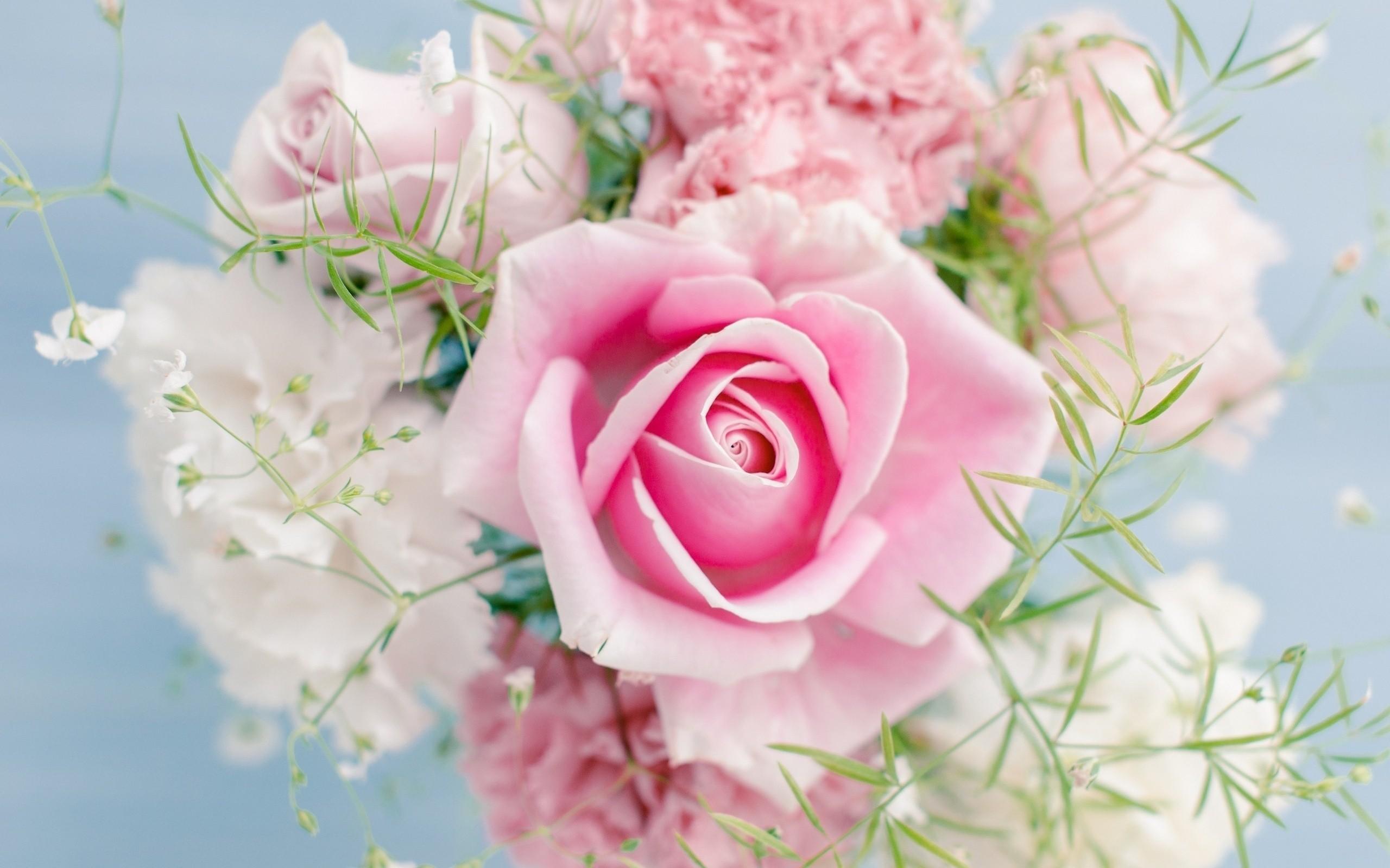 Fondos Flores ADNFriki (1)
